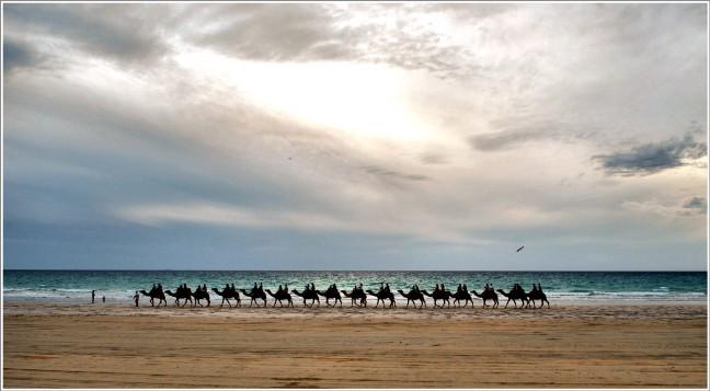 De kameel ziet zijn eigen bult niet...........