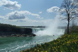 Falls in het voorjaar
