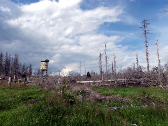 Polednik en de Orkaan