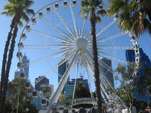 Reuzenrad in Perth