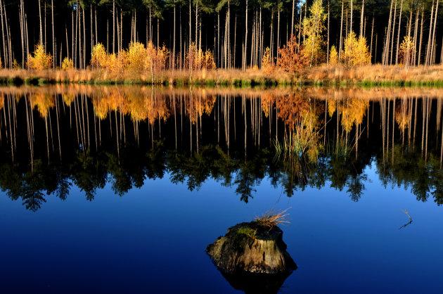 weerkaatsing herfst