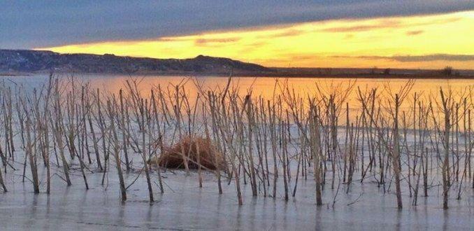 Bevroren meer in Noord-Dakota