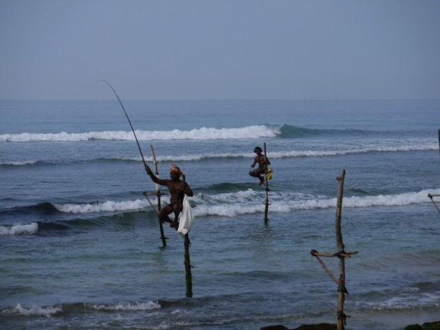 De paalvissers in Sri Lanka