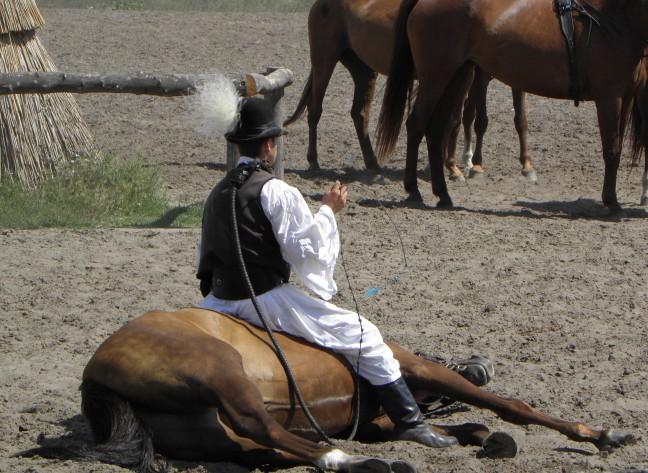 Bugac Puszta (paardemennen)