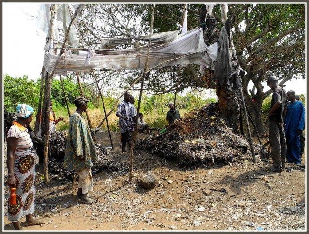 Dankoli: de voodoo site van Benin
