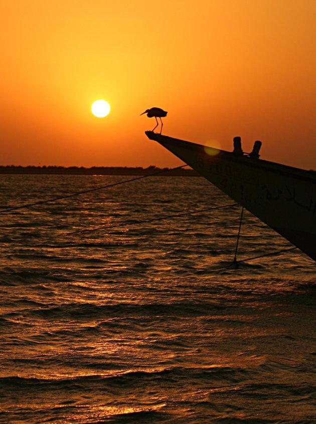 Zonsondergang bij de Rode Zee