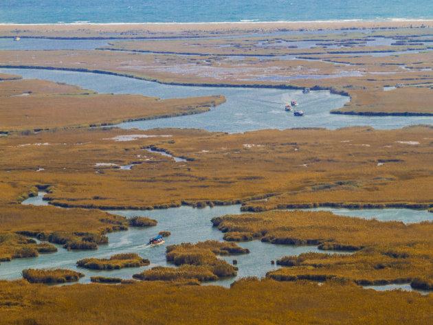 Bootjes in de delta