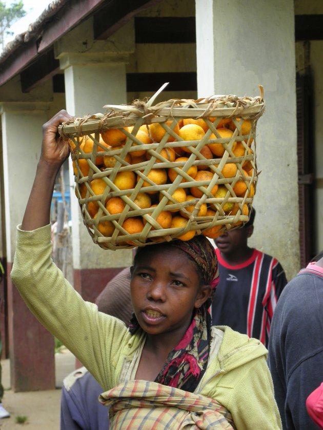 Sinasappels te koop!