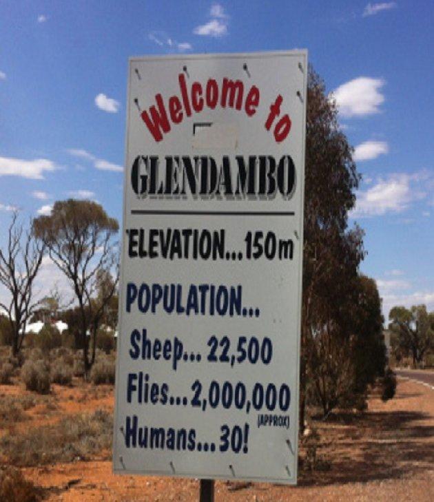 what's in a name Glendumbo !!