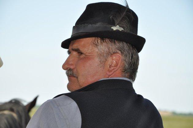 Hongaarse bestuurder van een paardenwagen