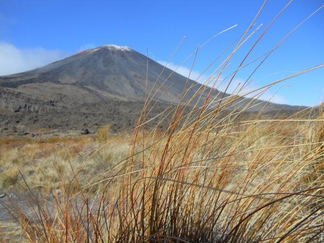Woeste wildernis van Tongariro
