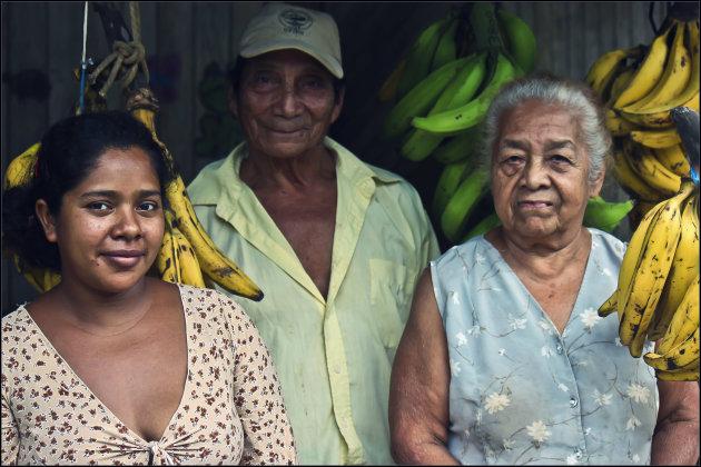 Bananen familie