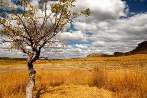 Landschap Parc National d'Isalo