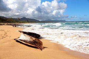 Oostkust eiland Kauai