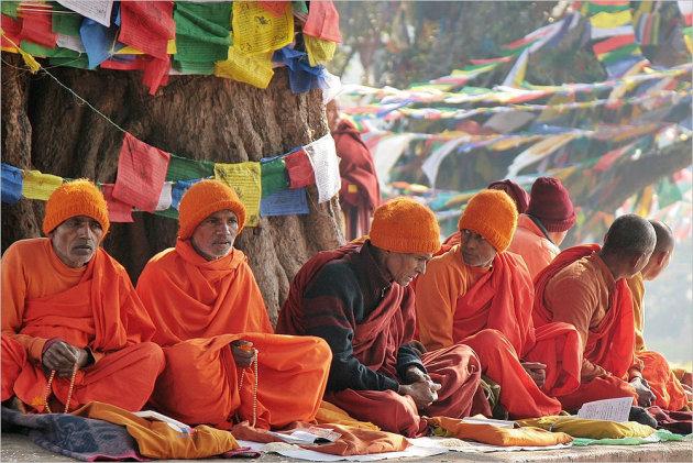 meditatie, studie, gebed, discussie