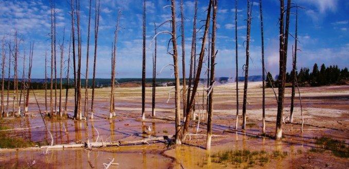 Yellowstone National Parc