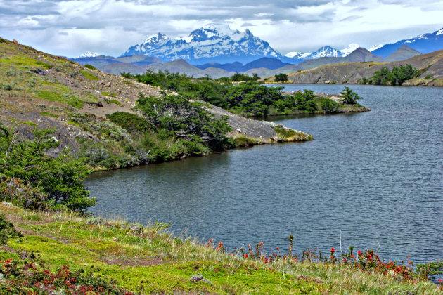 N.P Torres del Paine