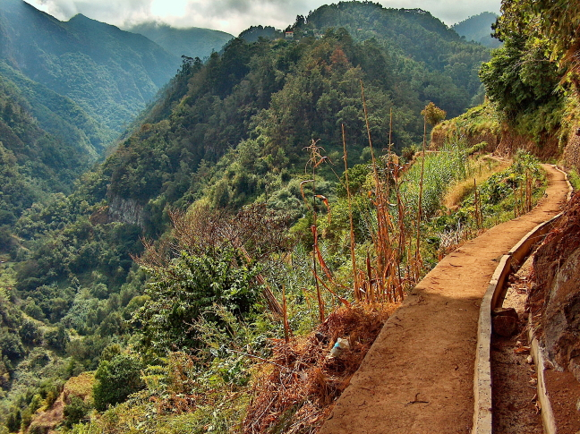Levada's in Madeira