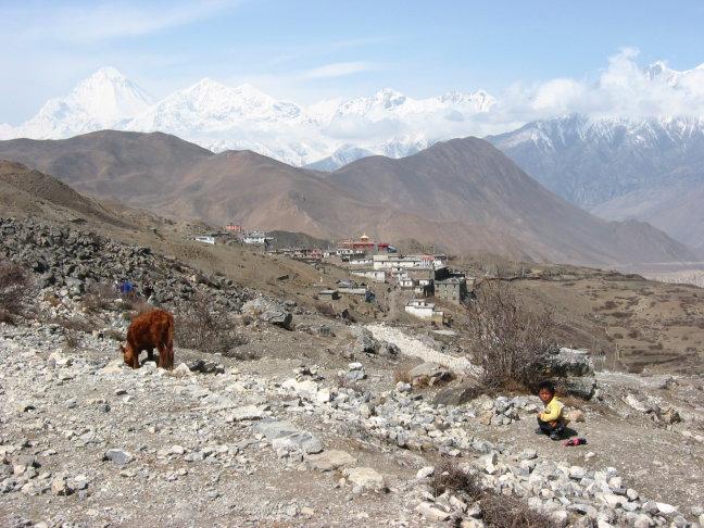 Dhaulagiri vanuit Muktinath