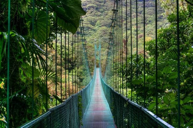 Monteverde skywalk