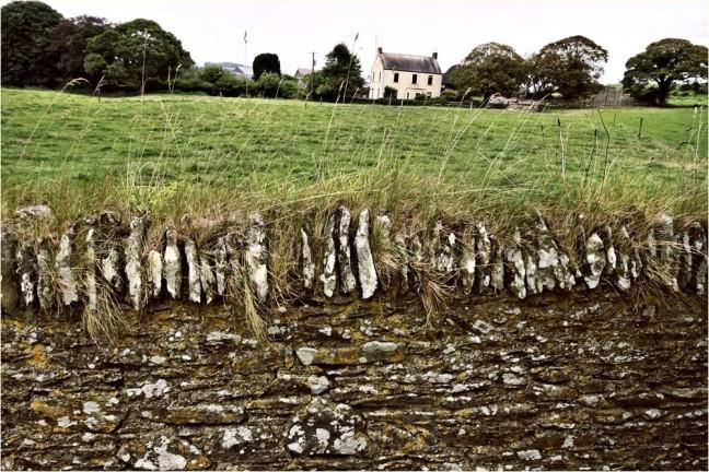 muurtjes in het landschap