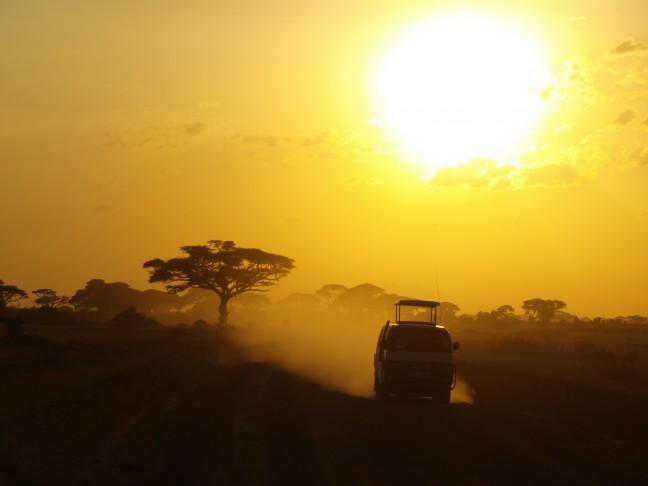 ondergaande zon tijdens safari
