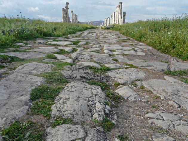 De hoofdweg in Apamea