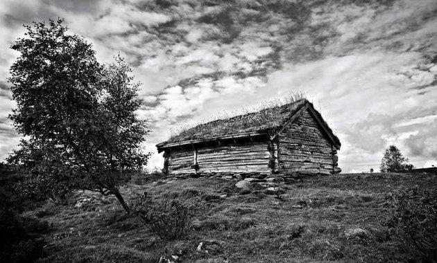 Norwegian Shed