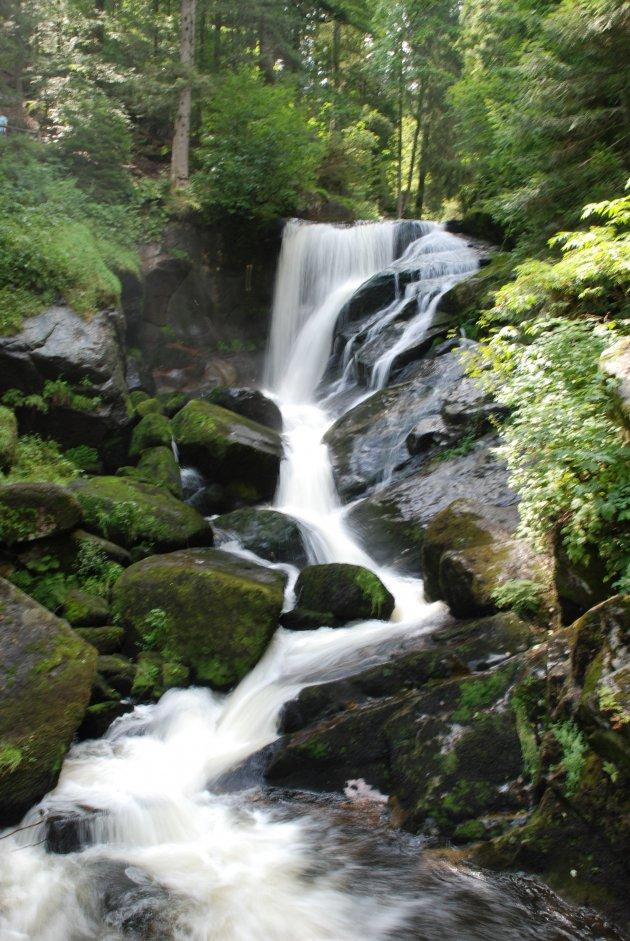 Watervallen van Triberg, Zwarte Woud