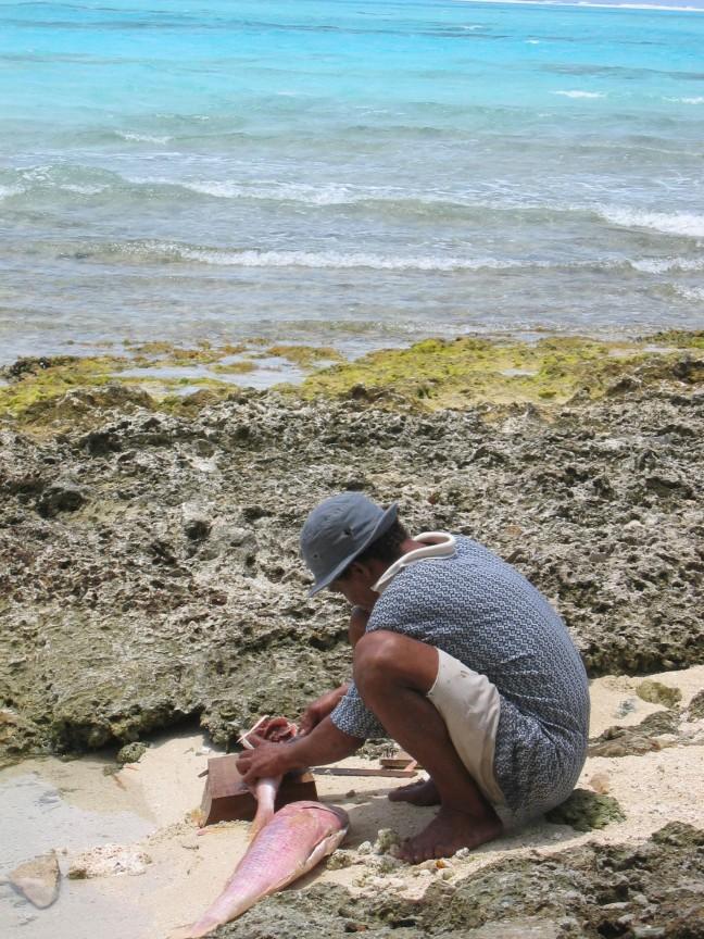 net gevangen vis wordt schoongemaakt door de visser zelf