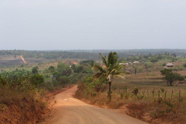 Waarheen gaat de weg, Shimba Hills