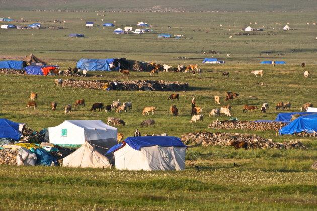 Nomaden in Turkije
