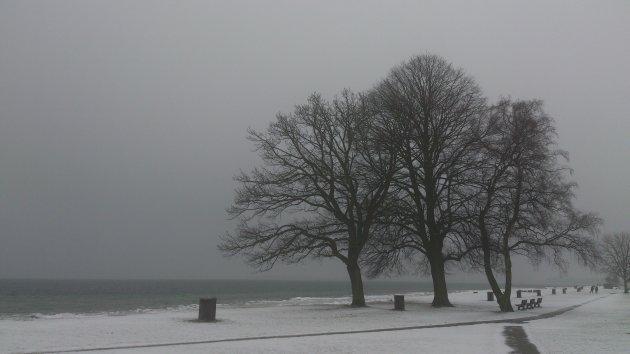 Kustlijn boven Kopenhagen in de winter
