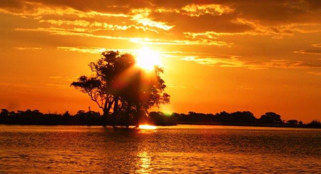 Sunsetcruise Chobe rivier