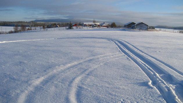 (openen!) Sporen in de sneeuw