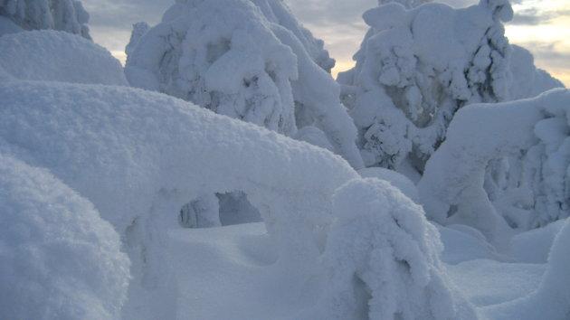 Dikke lagen sneeuw