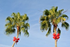kerst in the Sunshine state