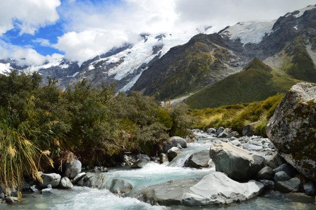 50 Tinten groen Nieuw-Zeeland