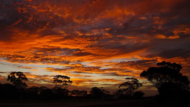 Outback zonsondergang