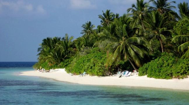Palmenstrandje