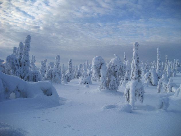 Nog meer sneeuw...