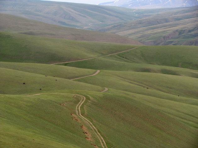 groen land