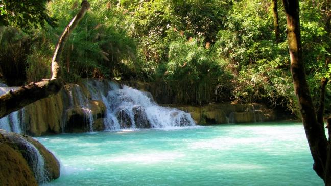Natural Swimmingpool