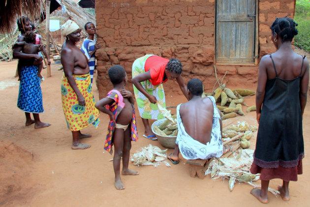 Baobab vruchten schoonmaken