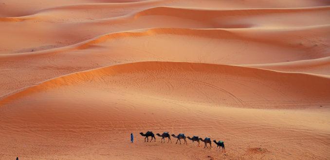 Golvende duinen met het warme licht van de zonsondergang