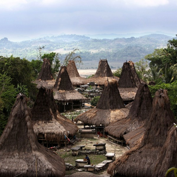 '446323' door Expeditieteam-Sumba