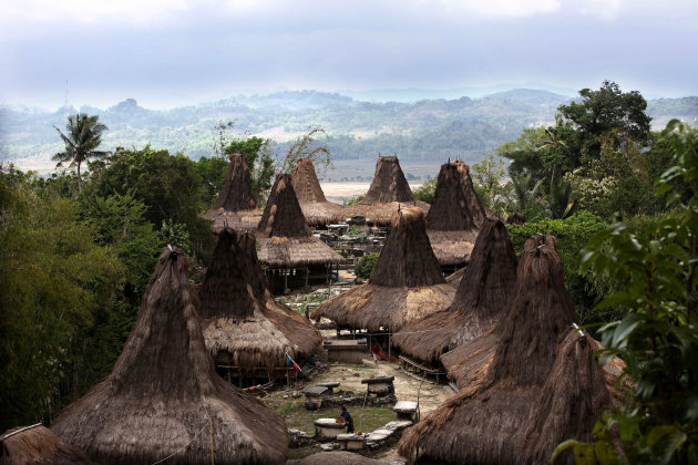 Traditionele huizen op Sumba