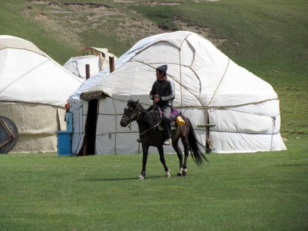 Yurt-camp