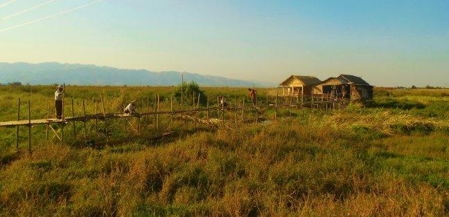 Bruggen bouwen in Birma