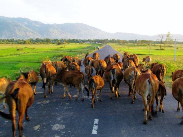 Wegversperring in Vietnamese Hooglanden